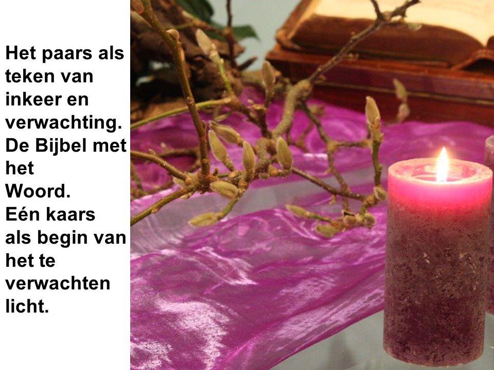 Het paars als teken van inkeer en verwachting. De Bijbel met het Woord