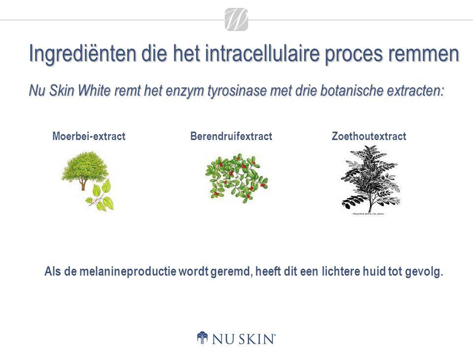 Ingrediënten die het intracellulaire proces remmen