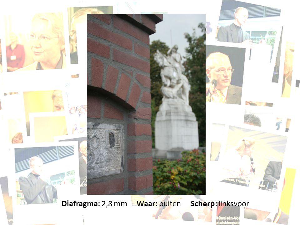 Diafragma: 2,8 mm Waar: buiten Scherp: linksvoor