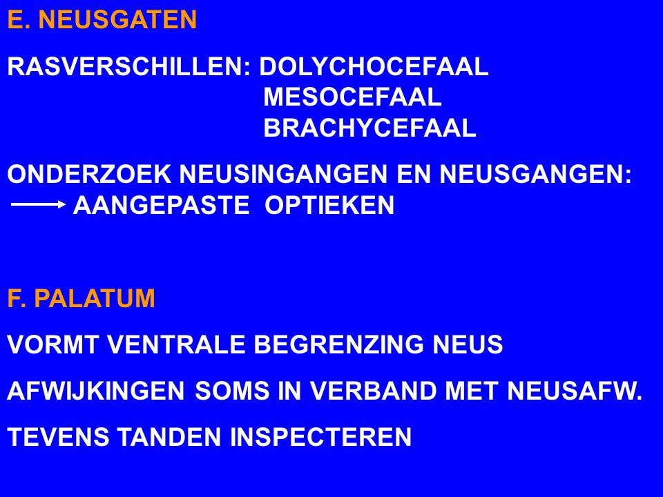 E. NEUSGATEN RASVERSCHILLEN: DOLYCHOCEFAAL MESOCEFAAL BRACHYCEFAAL.