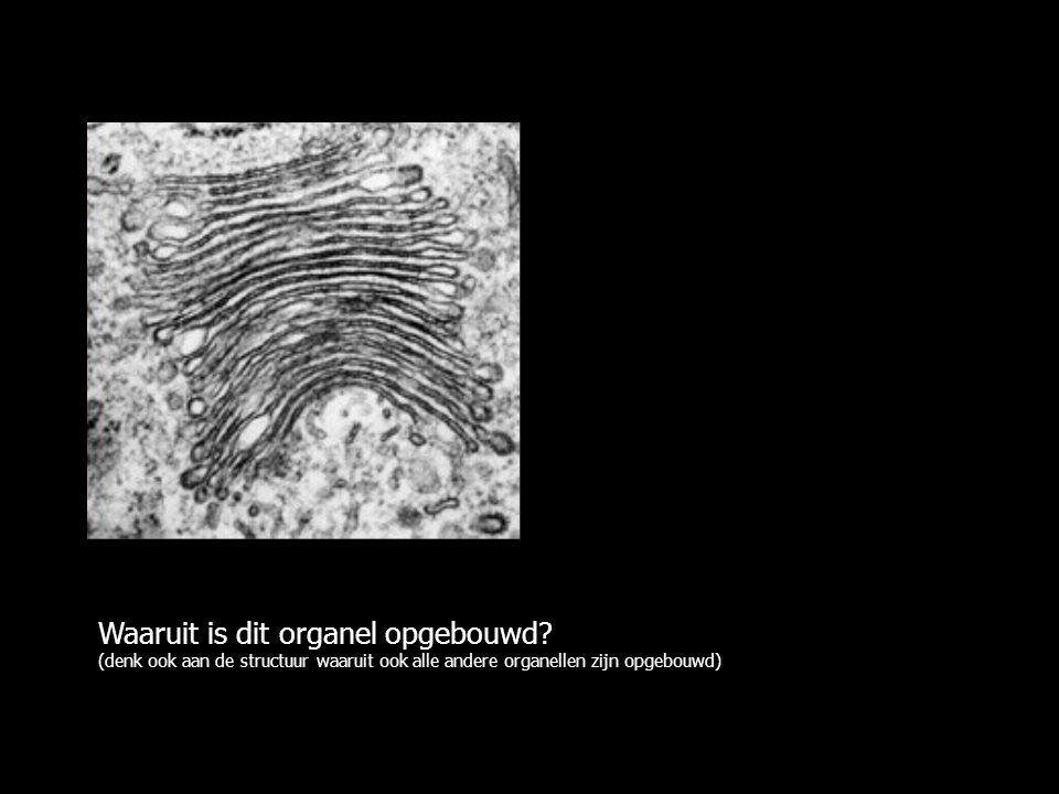 Waaruit is dit organel opgebouwd