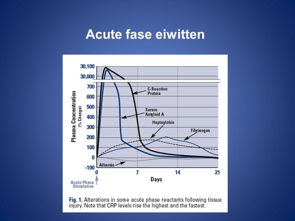Acute fase eiwitten