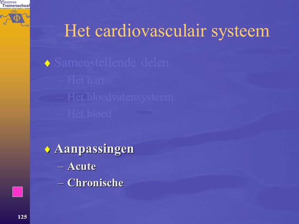 Het cardiovasculair systeem