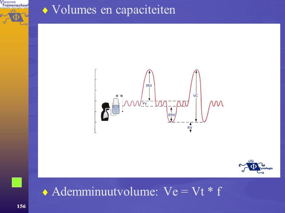 Volumes en capaciteiten
