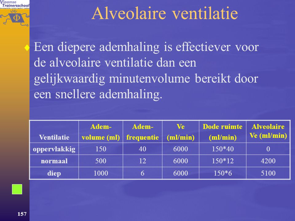 Alveolaire ventilatie