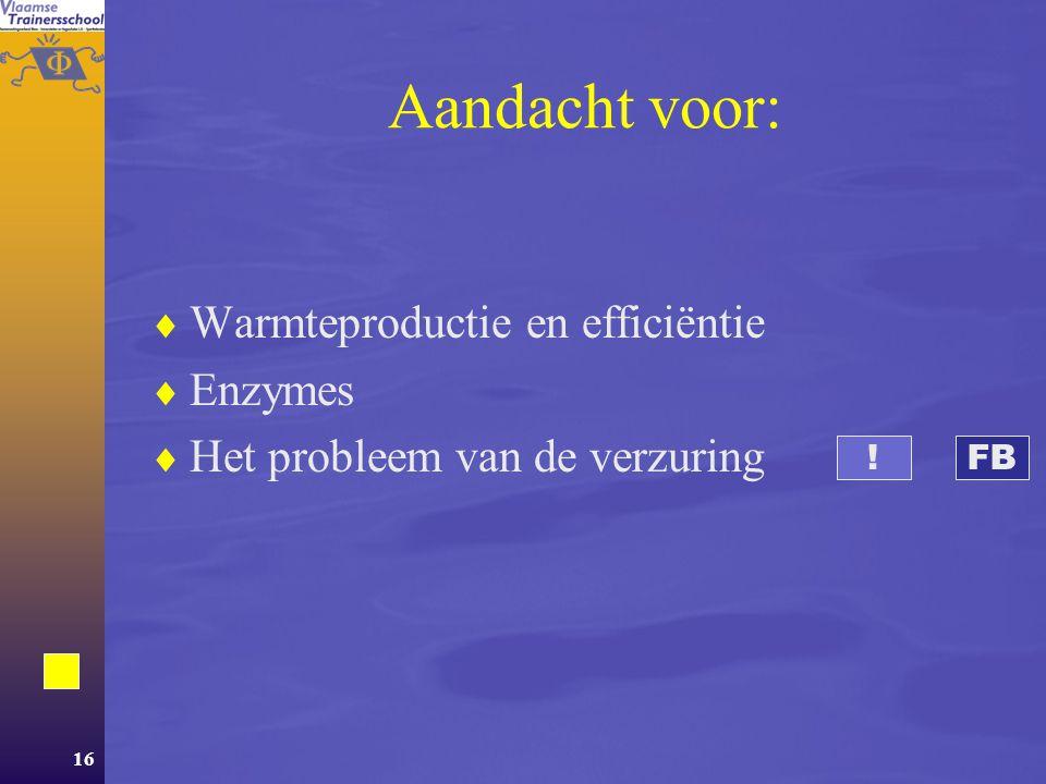 Aandacht voor: Warmteproductie en efficiëntie Enzymes
