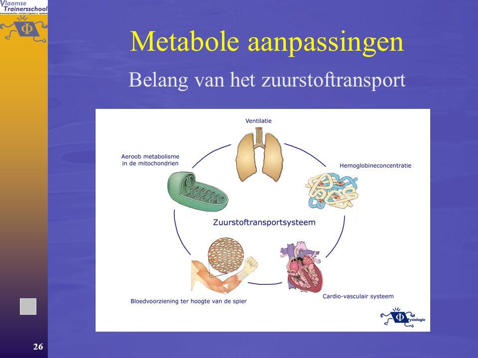 Metabole aanpassingen