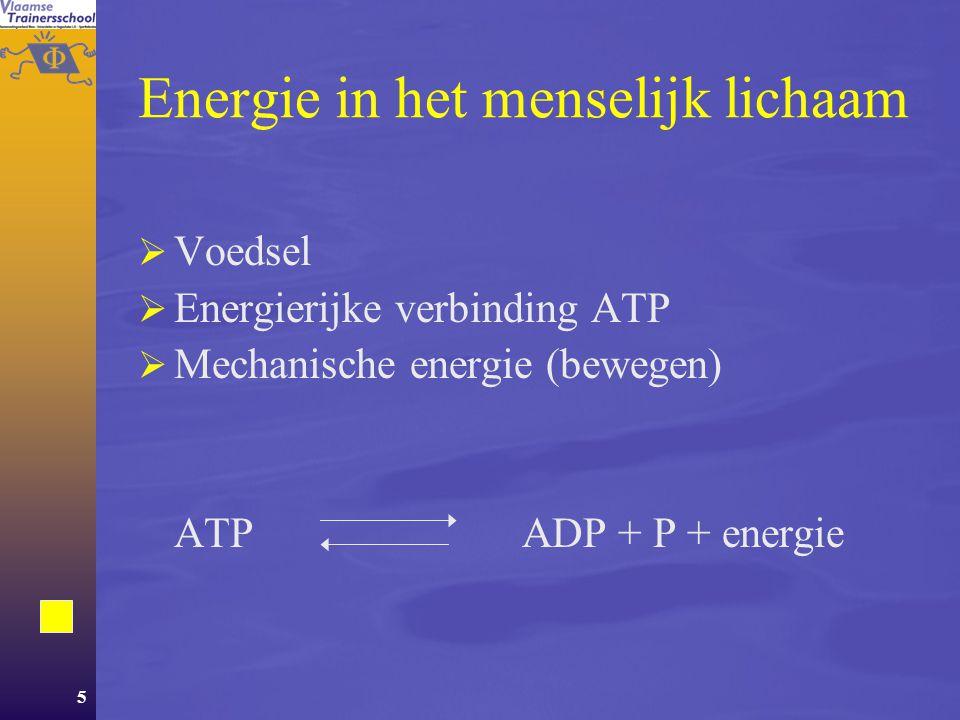 Energie in het menselijk lichaam