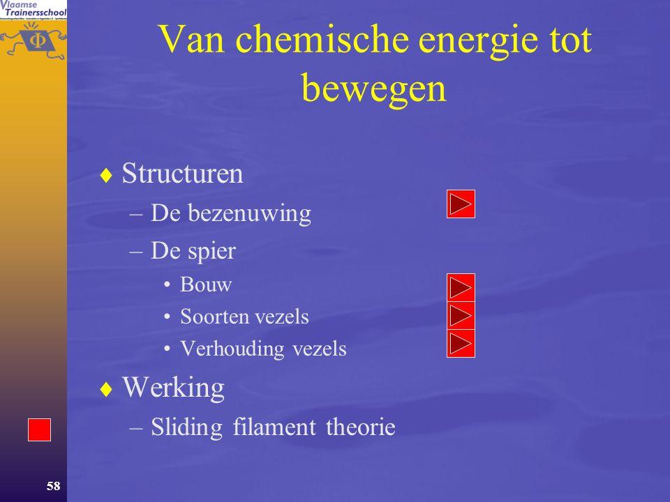 Van chemische energie tot bewegen