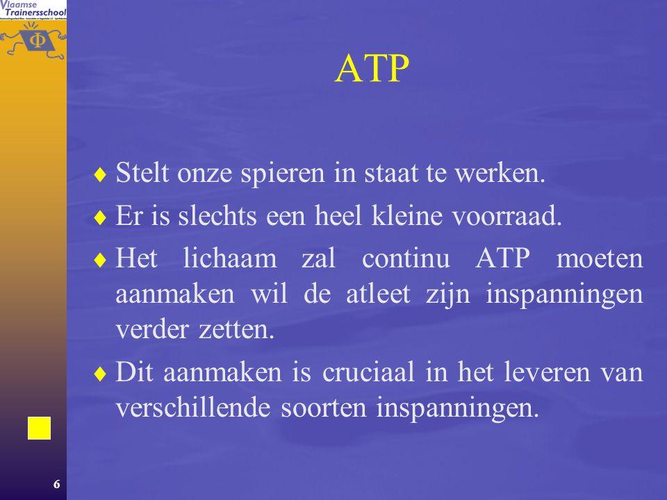 ATP Stelt onze spieren in staat te werken.
