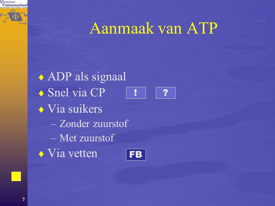 Aanmaak van ATP ADP als signaal Snel via CP Via suikers Via vetten