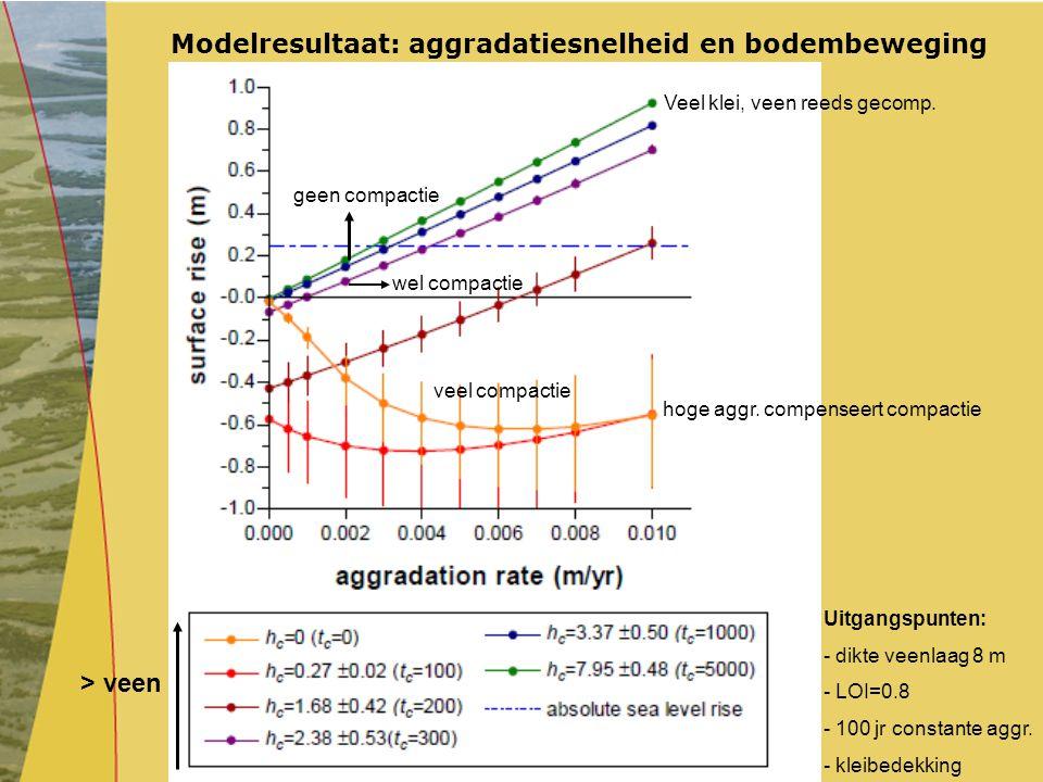 Modelresultaat: aggradatiesnelheid en bodembeweging
