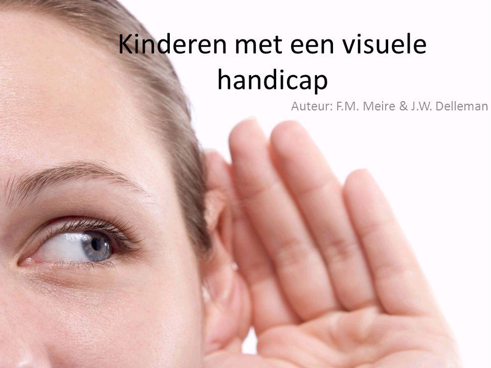 Kinderen met een visuele handicap