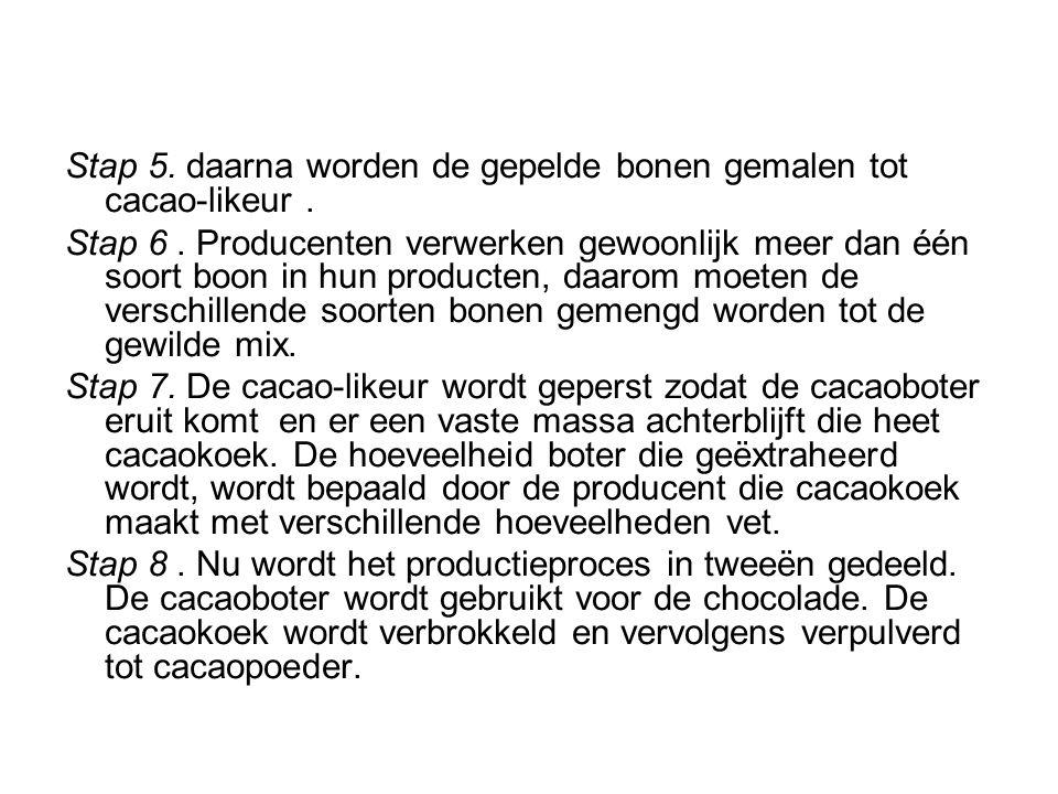 Stap 5. daarna worden de gepelde bonen gemalen tot cacao-likeur .