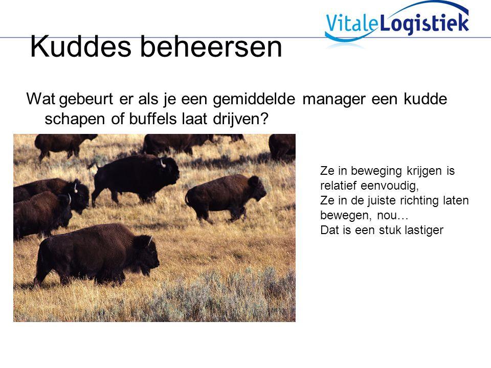 Kuddes beheersen Wat gebeurt er als je een gemiddelde manager een kudde schapen of buffels laat drijven