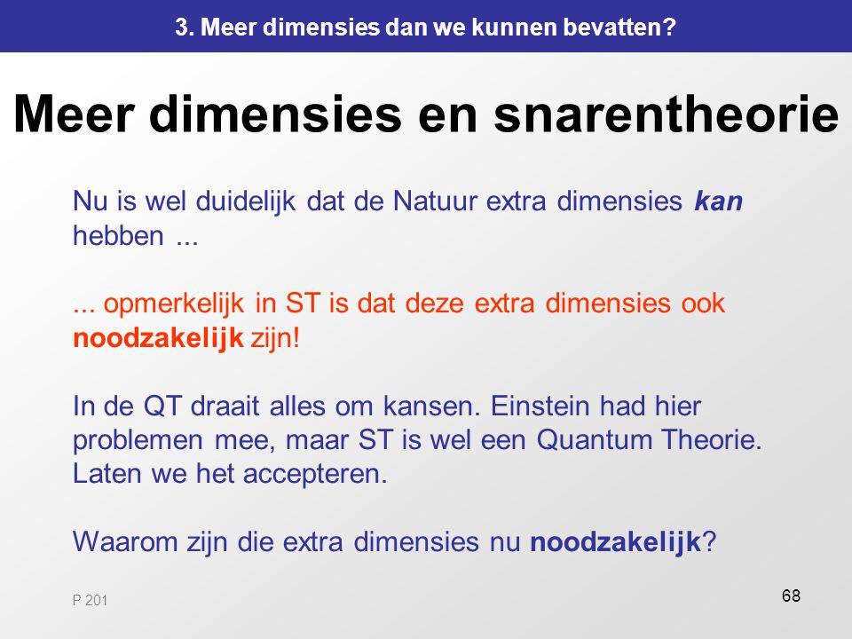 Meer dimensies en snarentheorie