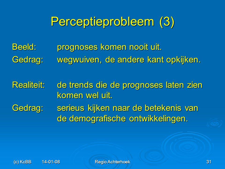 Perceptieprobleem (3) Beeld: prognoses komen nooit uit.