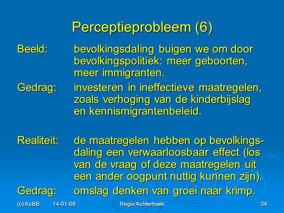 Perceptieprobleem (6) Beeld: bevolkingsdaling buigen we om door bevolkingspolitiek: meer geboorten, meer immigranten.