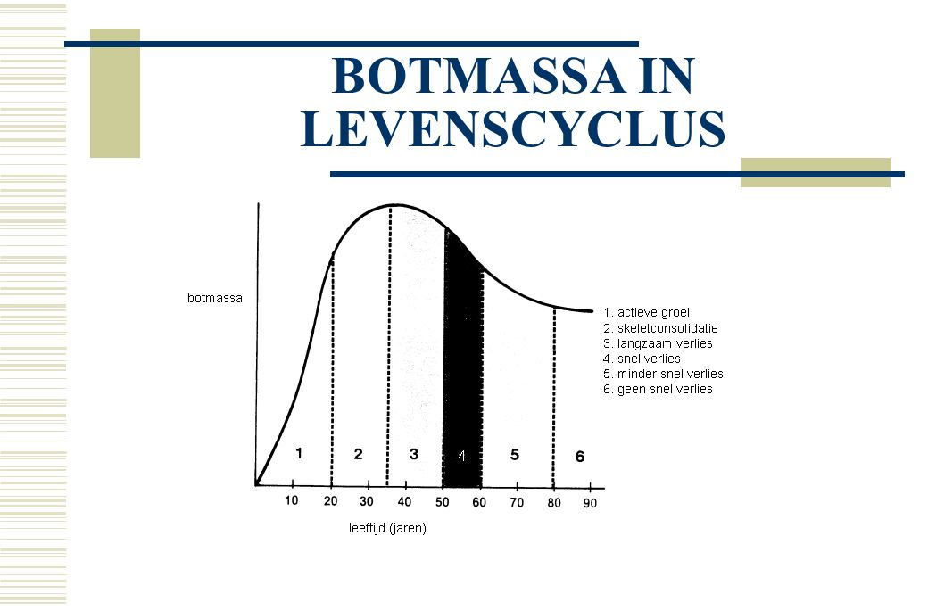 BOTMASSA IN LEVENSCYCLUS