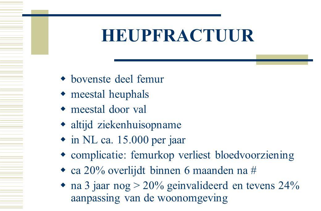 HEUPFRACTUUR bovenste deel femur meestal heuphals meestal door val