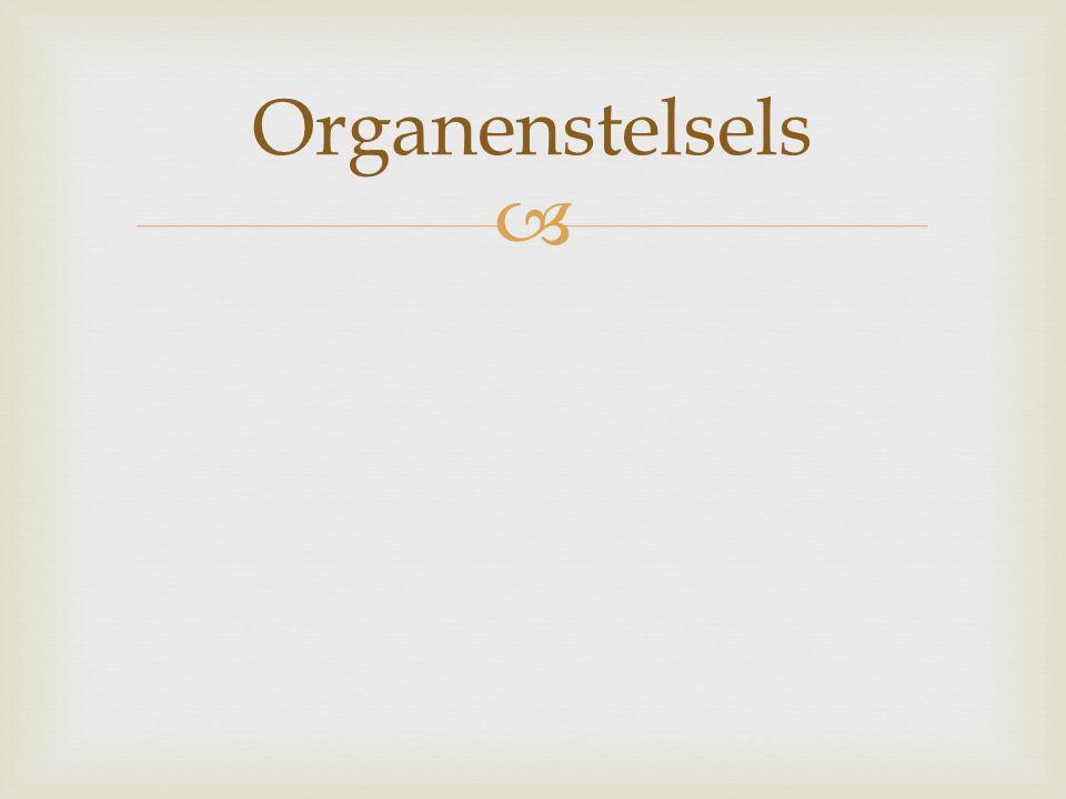 Organenstelsels