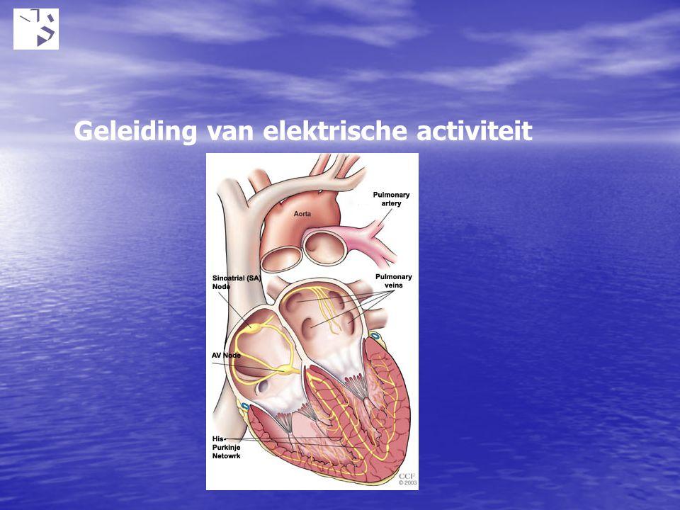 Geleiding van elektrische activiteit