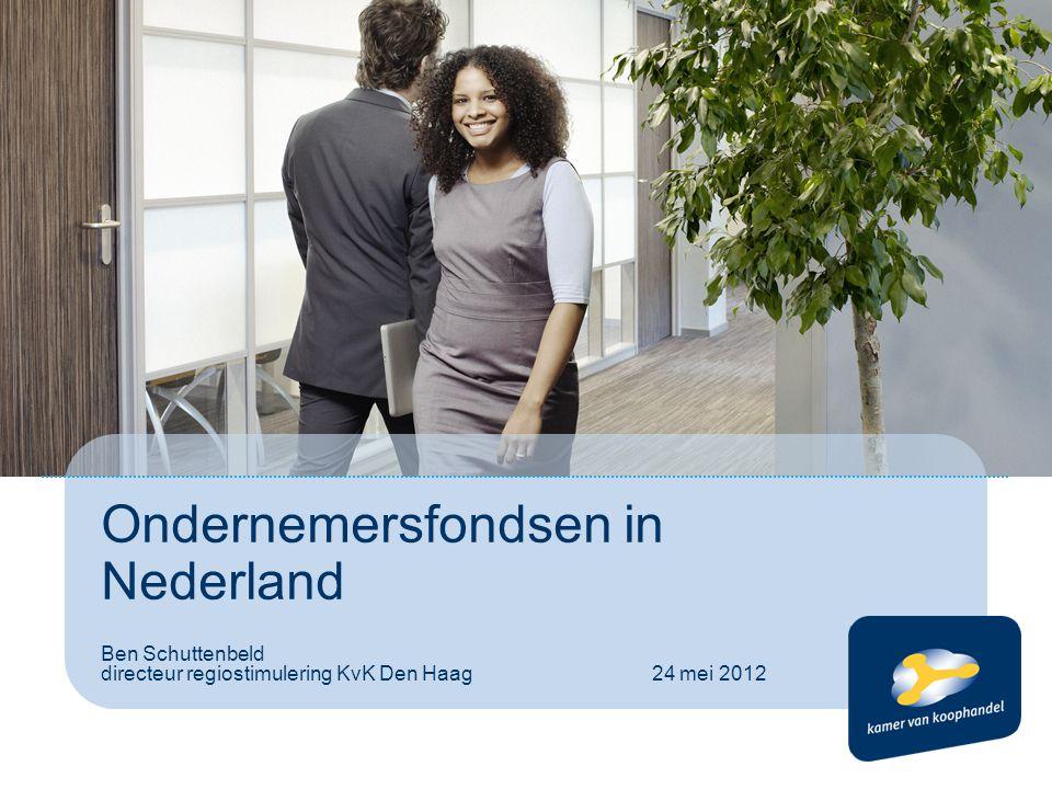Ondernemersfondsen in Nederland