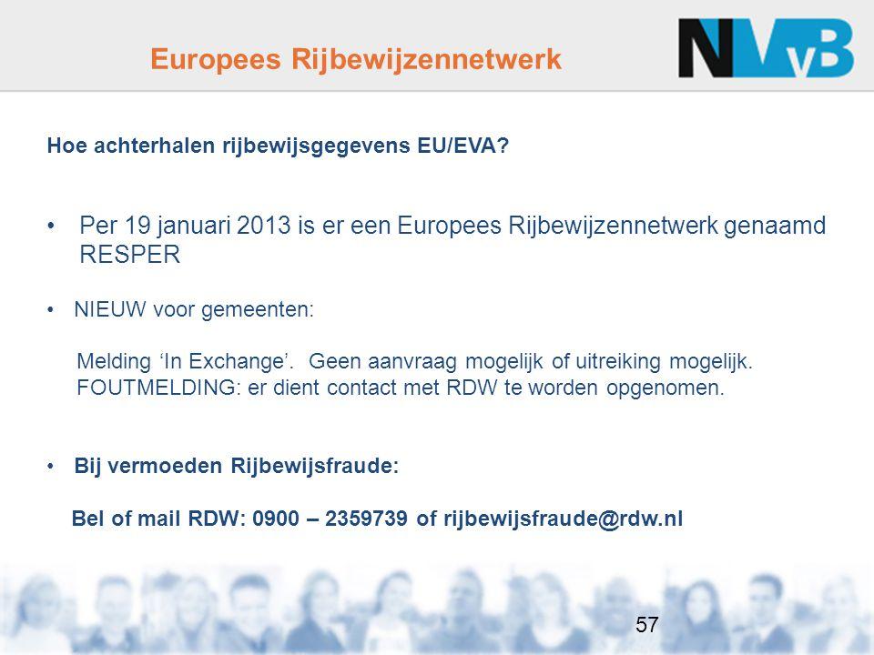Europees Rijbewijzennetwerk