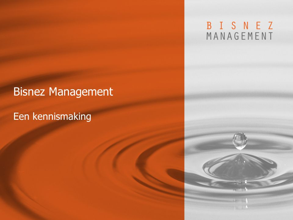 Bisnez Management Een kennismaking