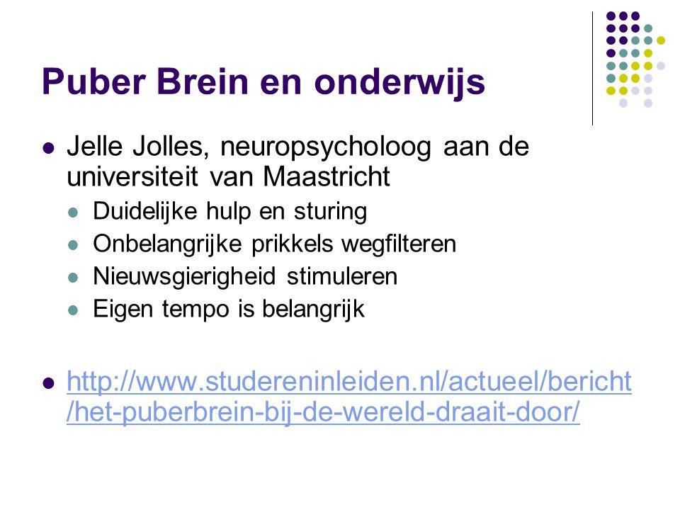 Puber Brein en onderwijs