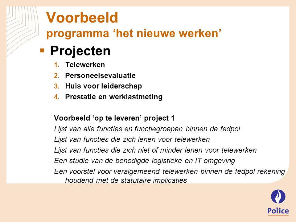 Voorbeeld programma 'het nieuwe werken'