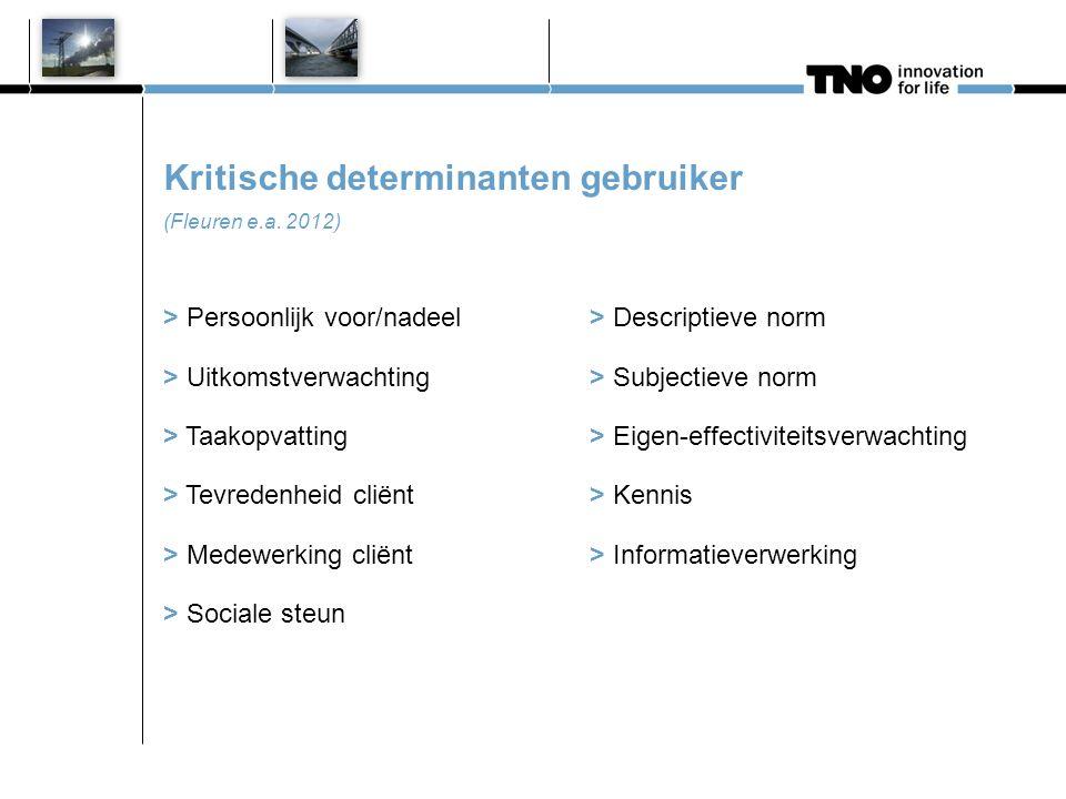 Kritische determinanten omgeving / organisatie (Fleuren e.a. 2012)