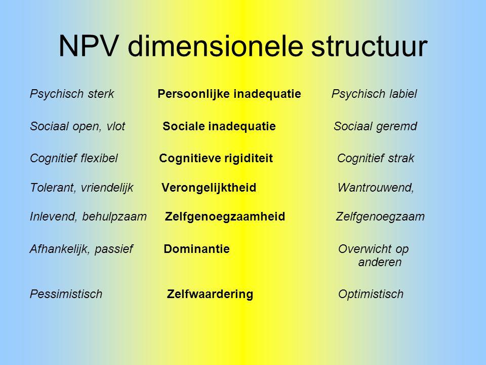 NPV dimensionele structuur