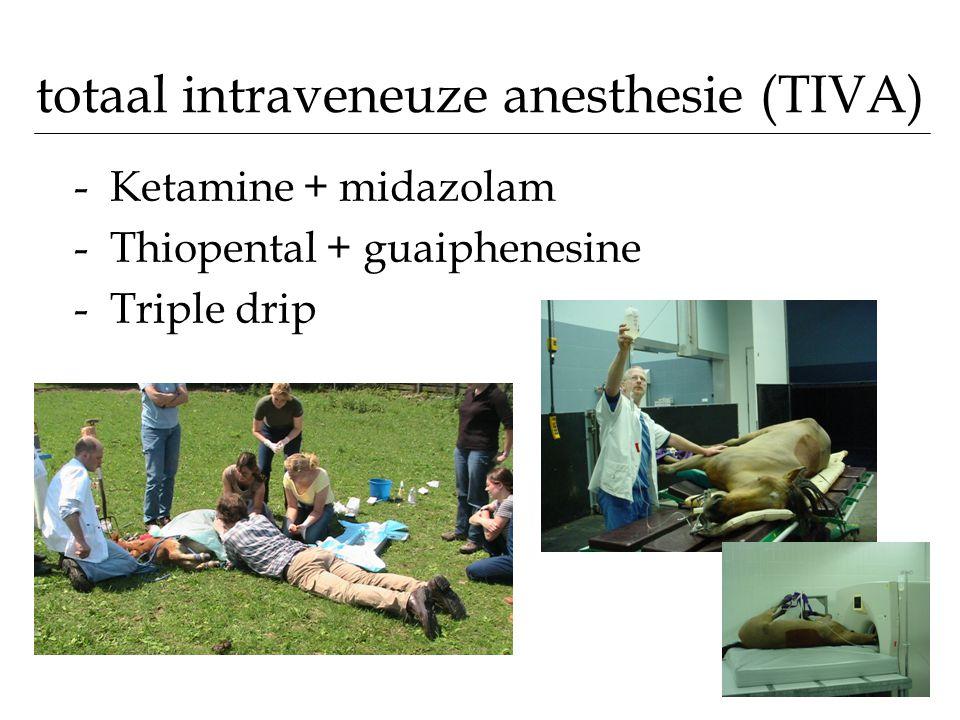 totaal intraveneuze anesthesie (TIVA)