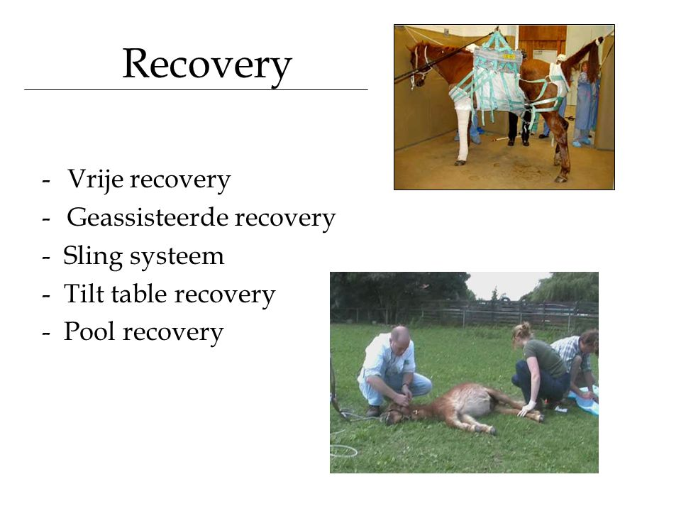 Recovery Vrije recovery Geassisteerde recovery - Sling systeem