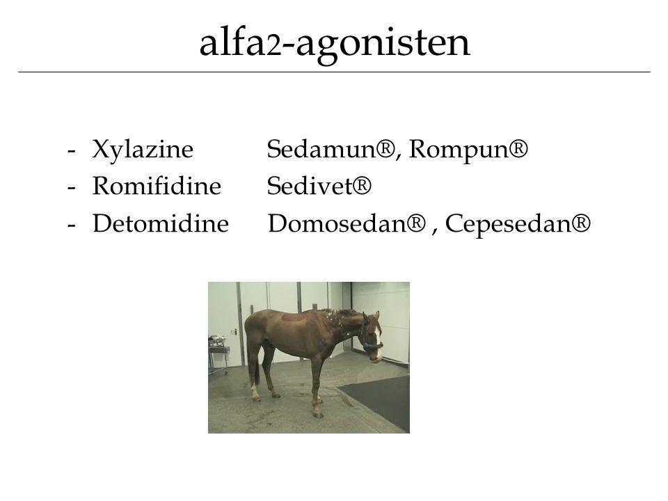 alfa2-agonisten Xylazine Sedamun®, Rompun® Romifidine Sedivet®