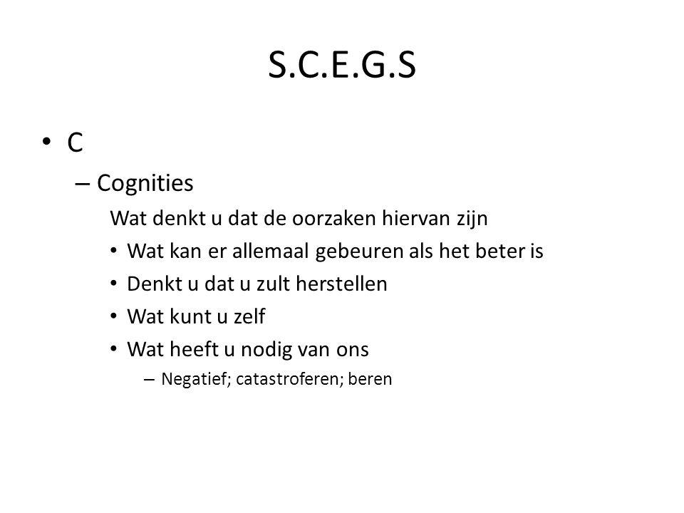 S.C.E.G.S C Cognities Wat denkt u dat de oorzaken hiervan zijn