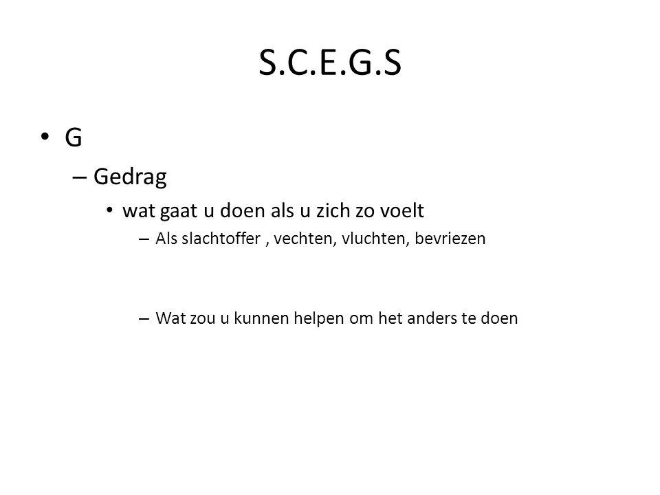 S.C.E.G.S G Gedrag wat gaat u doen als u zich zo voelt