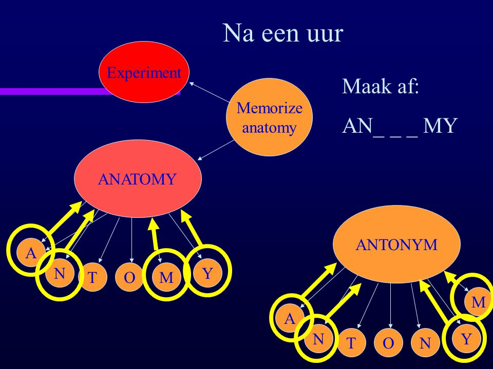 Na een uur Maak af: AN_ _ _ MY Experiment Memorize anatomy ANATOMY