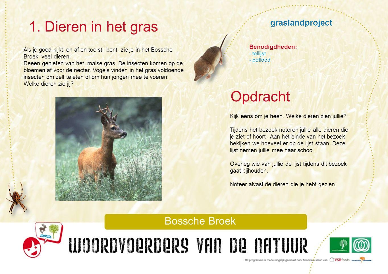 1. Dieren in het gras Opdracht graslandproject Bossche Broek