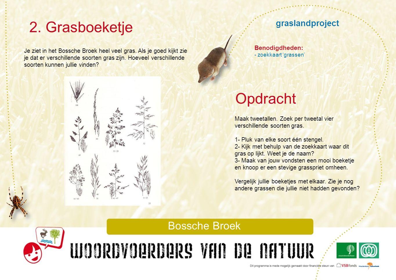 2. Grasboeketje Opdracht graslandproject Bossche Broek Benodigdheden: