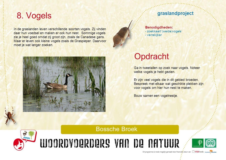 8. Vogels Opdracht graslandproject Bossche Broek Benodigdheden: