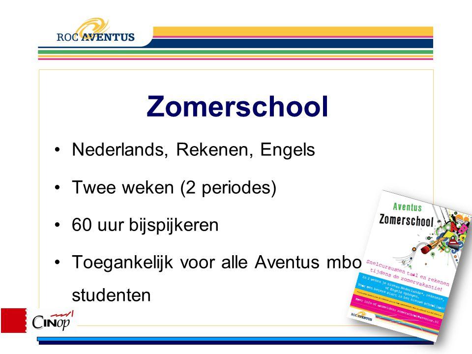 Zomerschool Nederlands, Rekenen, Engels Twee weken (2 periodes)