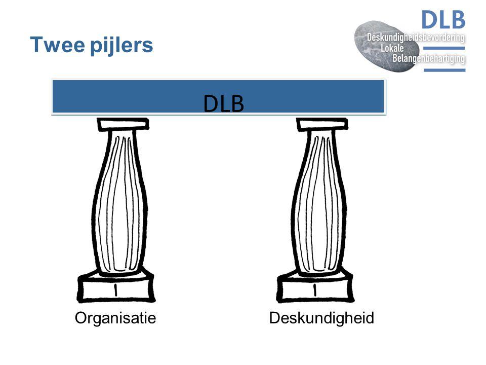 Twee pijlers Organisatie Deskundigheid DLB 5