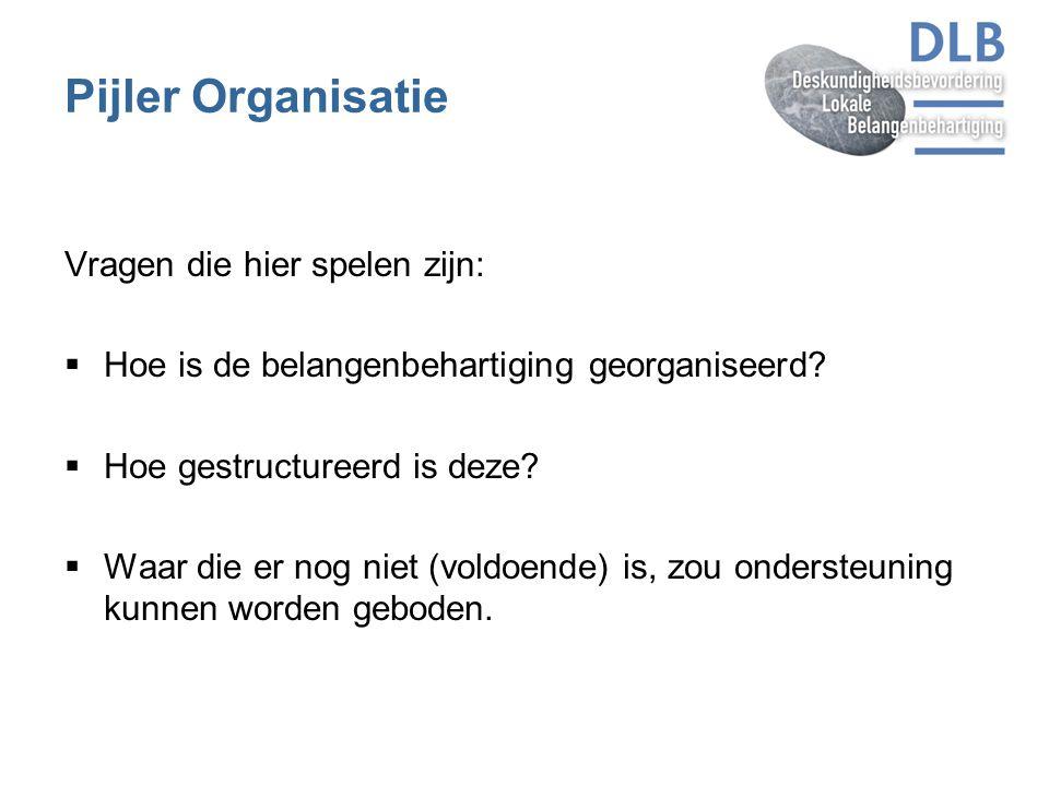 Pijler Organisatie Vragen die hier spelen zijn: