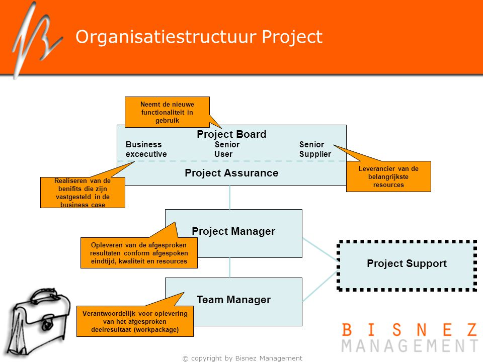 Organisatiestructuur Project