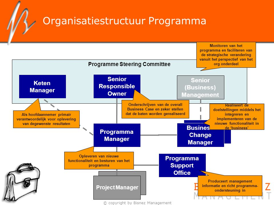 Organisatiestructuur Programma