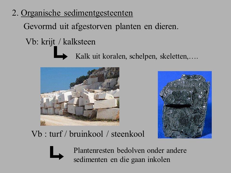 2. Organische sedimentgesteenten