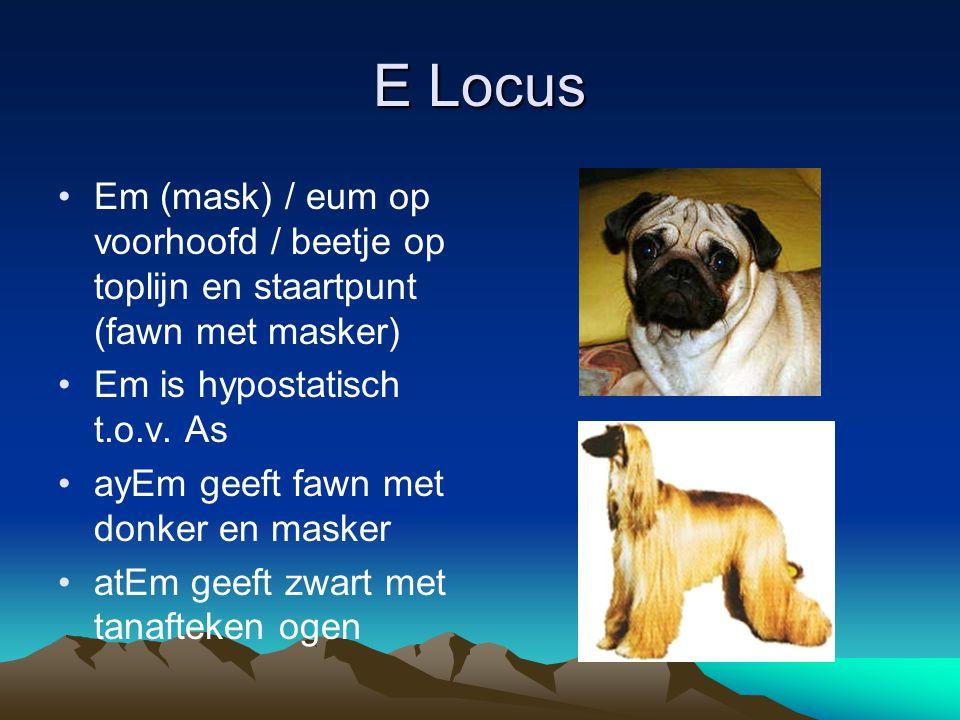 E Locus Em (mask) / eum op voorhoofd / beetje op toplijn en staartpunt (fawn met masker) Em is hypostatisch t.o.v. As.