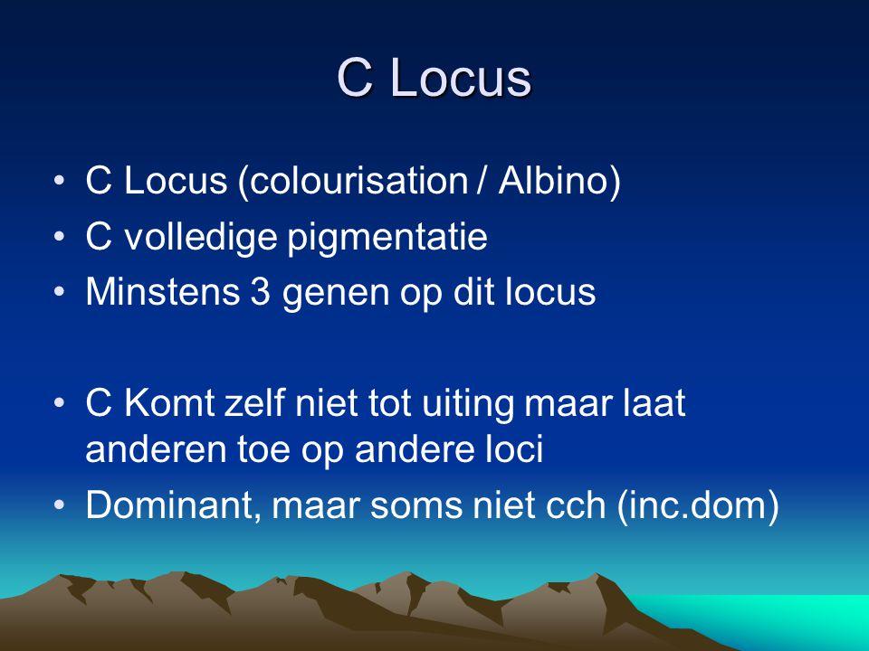 C Locus C Locus (colourisation / Albino) C volledige pigmentatie